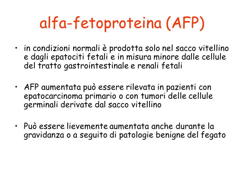 alfa-fetoproteina (AFP) in condizioni normali è prodotta solo nel sacco vitellino e dagli epatociti fetali e in misura minore dalle cellule del tratto