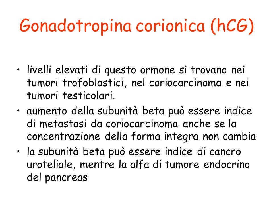 Gonadotropina corionica (hCG) livelli elevati di questo ormone si trovano nei tumori trofoblastici, nel coriocarcinoma e nei tumori testicolari. aumen