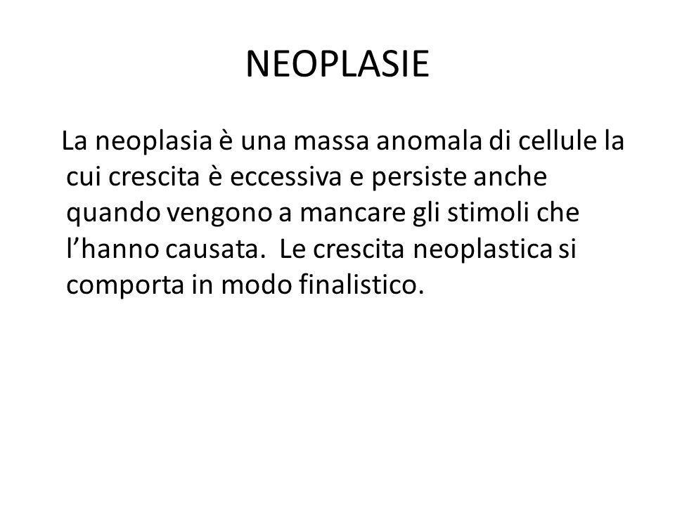 NEOPLASIE La neoplasia è una massa anomala di cellule la cui crescita è eccessiva e persiste anche quando vengono a mancare gli stimoli che lhanno cau