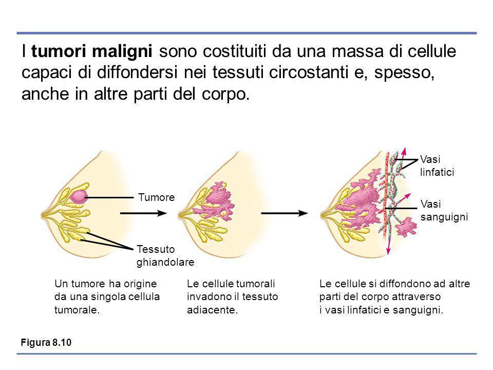 I tumori maligni sono costituiti da una massa di cellule capaci di diffondersi nei tessuti circostanti e, spesso, anche in altre parti del corpo.