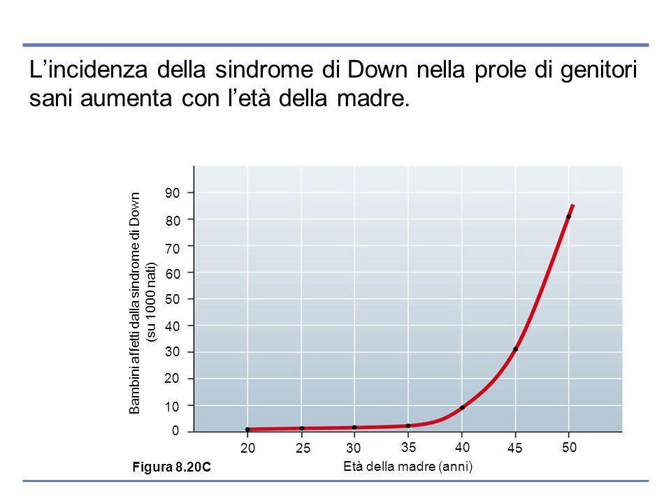 Lincidenza della sindrome di Down nella prole di genitori sani aumenta con letà della madre.