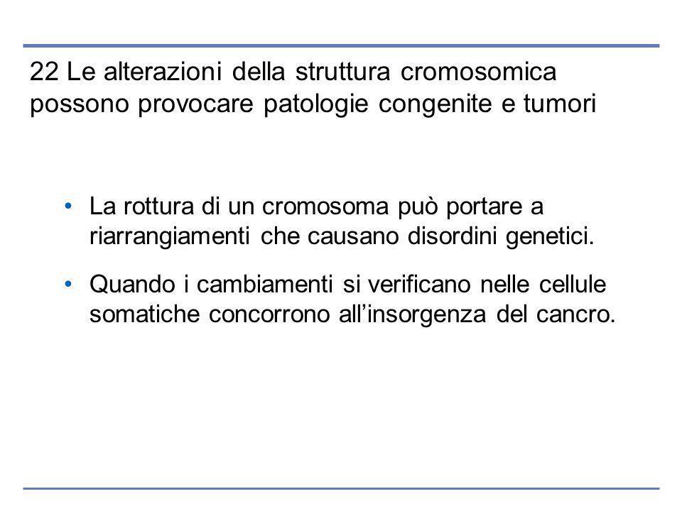 22 Le alterazioni della struttura cromosomica possono provocare patologie congenite e tumori La rottura di un cromosoma può portare a riarrangiamenti che causano disordini genetici.