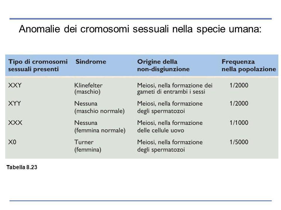 Anomalie dei cromosomi sessuali nella specie umana: Tabella 8.23