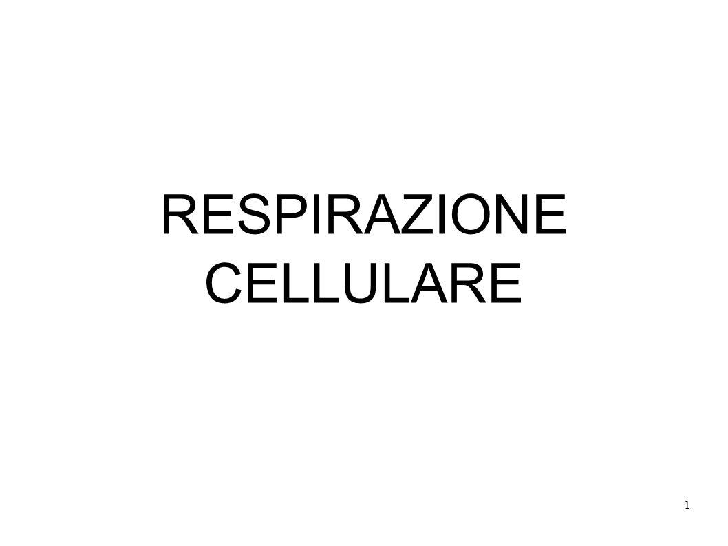 1 RESPIRAZIONE CELLULARE