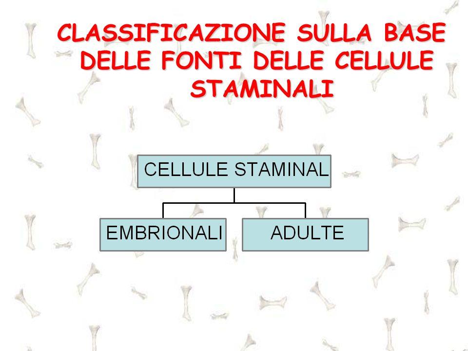 CLASSIFICAZIONE SULLA BASE DELLE FONTI DELLE CELLULE STAMINALI