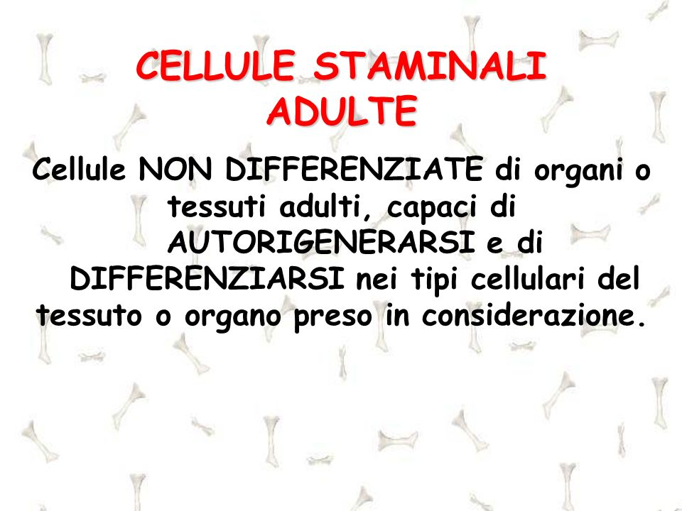 CELLULE STAMINALI ADULTE Cellule NON DIFFERENZIATE di organi o tessuti adulti, capaci di AUTORIGENERARSI e di DIFFERENZIARSI nei tipi cellulari del te