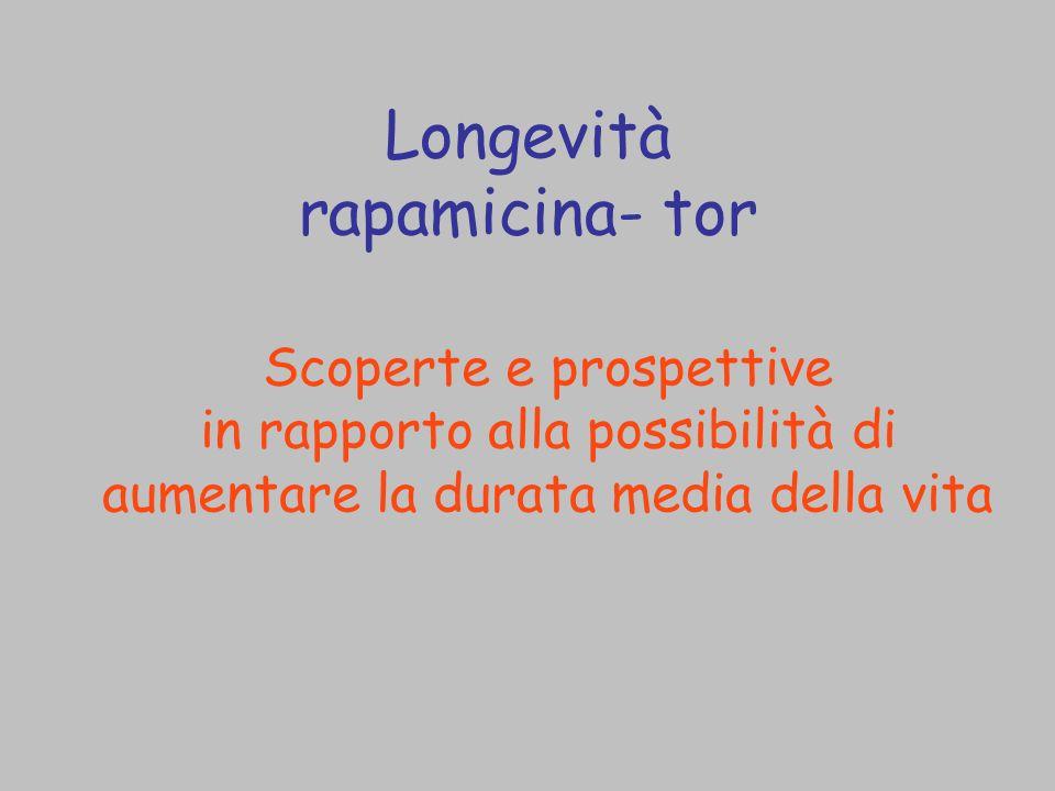 Longevità rapamicina- tor Scoperte e prospettive in rapporto alla possibilità di aumentare la durata media della vita