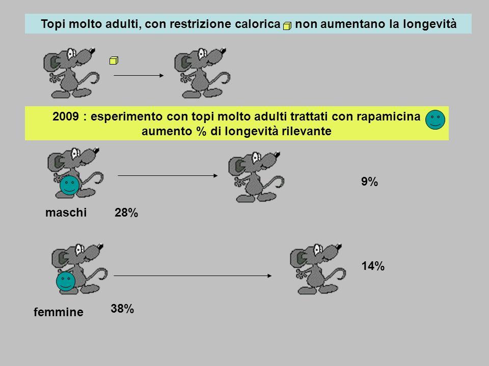 2009 : esperimento con topi molto adulti trattati con rapamicina aumento % di longevità rilevante Topi molto adulti, con restrizione calorica, non aum