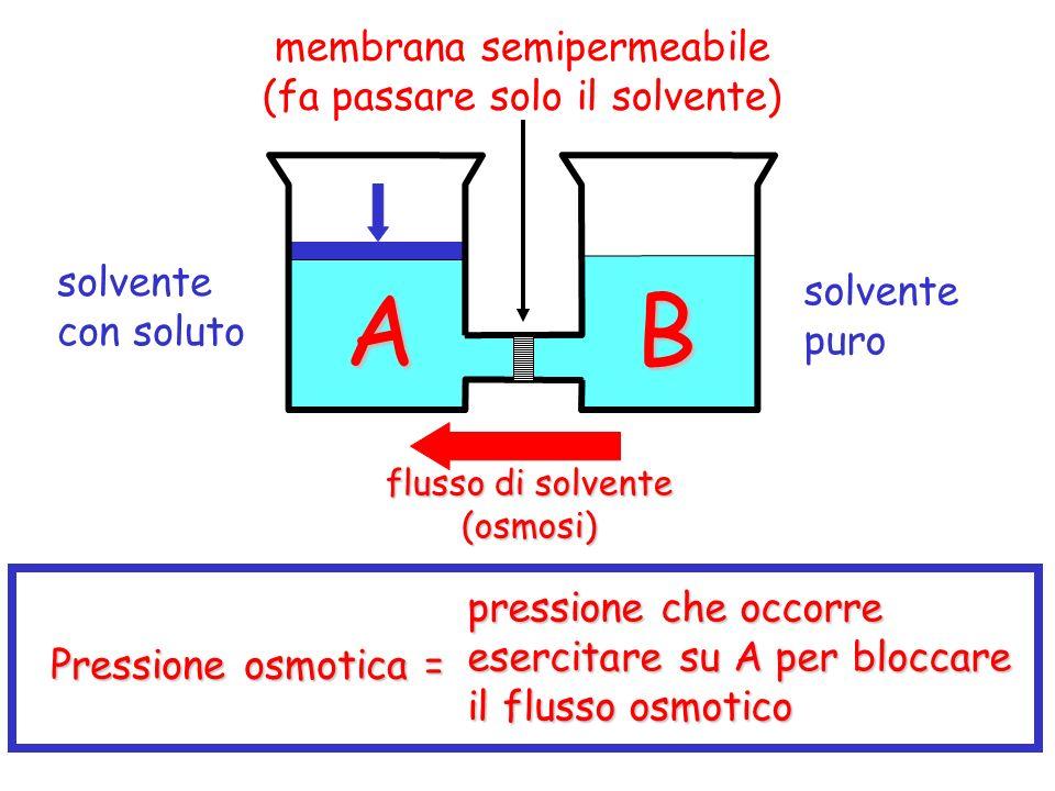 solvente con soluto solvente puro flusso di solvente (osmosi) Pressione osmotica = pressione che occorre esercitare su A per bloccare il flusso osmotico A B membrana semipermeabile (fa passare solo il solvente)