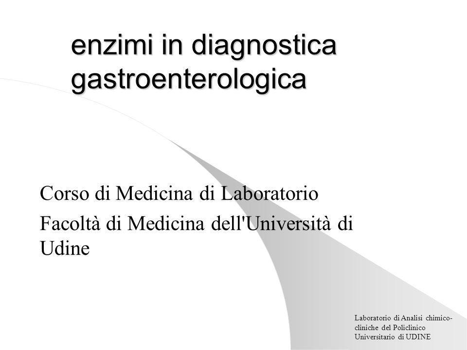 Laboratorio di Analisi chimico- cliniche del Policlinico Universitario di UDINE enzimi in diagnostica gastroenterologica Corso di Medicina di Laboratorio Facoltà di Medicina dell Università di Udine