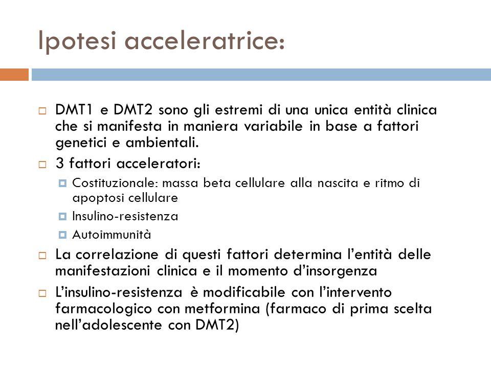 Ipotesi acceleratrice: DMT1 e DMT2 sono gli estremi di una unica entità clinica che si manifesta in maniera variabile in base a fattori genetici e ambientali.