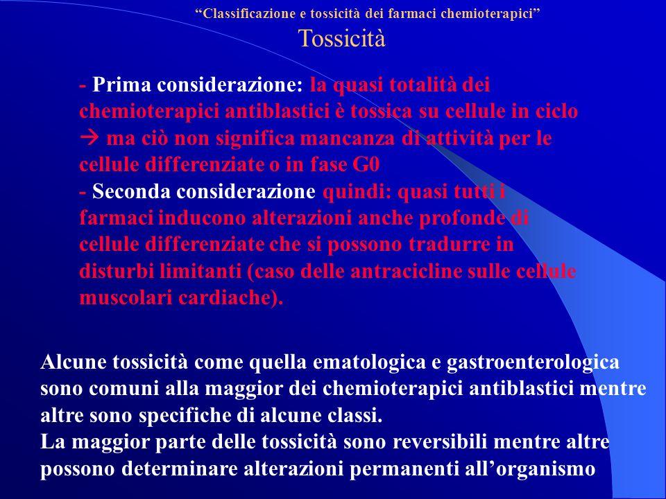 Classificazione e tossicità dei farmaci chemioterapici Tossicità - Prima considerazione: la quasi totalità dei chemioterapici antiblastici è tossica su cellule in ciclo ma ciò non significa mancanza di attività per le cellule differenziate o in fase G0 - Seconda considerazione quindi: quasi tutti i farmaci inducono alterazioni anche profonde di cellule differenziate che si possono tradurre in disturbi limitanti (caso delle antracicline sulle cellule muscolari cardiache).