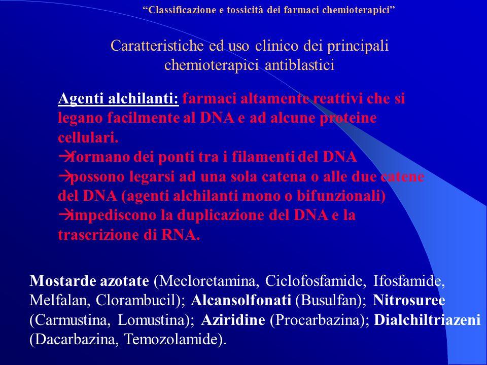 Classificazione e tossicità dei farmaci chemioterapici Caratteristiche ed uso clinico dei principali chemioterapici antiblastici Agenti alchilanti: farmaci altamente reattivi che si legano facilmente al DNA e ad alcune proteine cellulari.