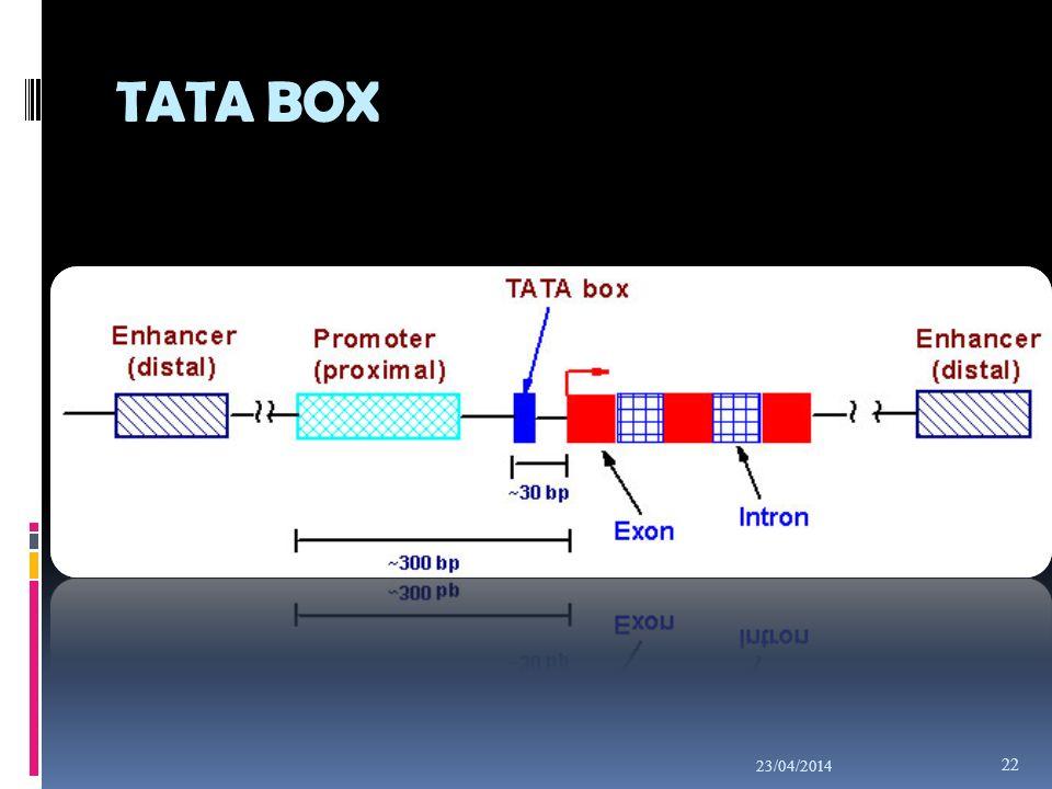 TATA BOX 23/04/2014 22