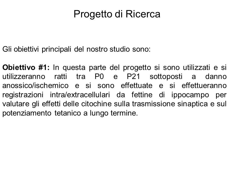 Gli obiettivi principali del nostro studio sono: Obiettivo #1: In questa parte del progetto si sono utilizzati e si utilizzeranno ratti tra P0 e P21 s