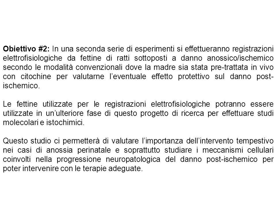Obiettivo #2: In una seconda serie di esperimenti si effettueranno registrazioni elettrofisiologiche da fettine di ratti sottoposti a danno anossico/i