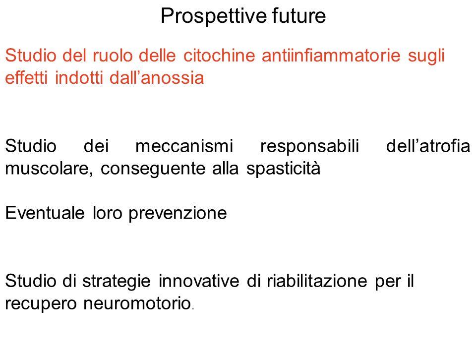 Prospettive future Studio dei meccanismi responsabili dellatrofia muscolare, conseguente alla spasticità Eventuale loro prevenzione Studio di strategi