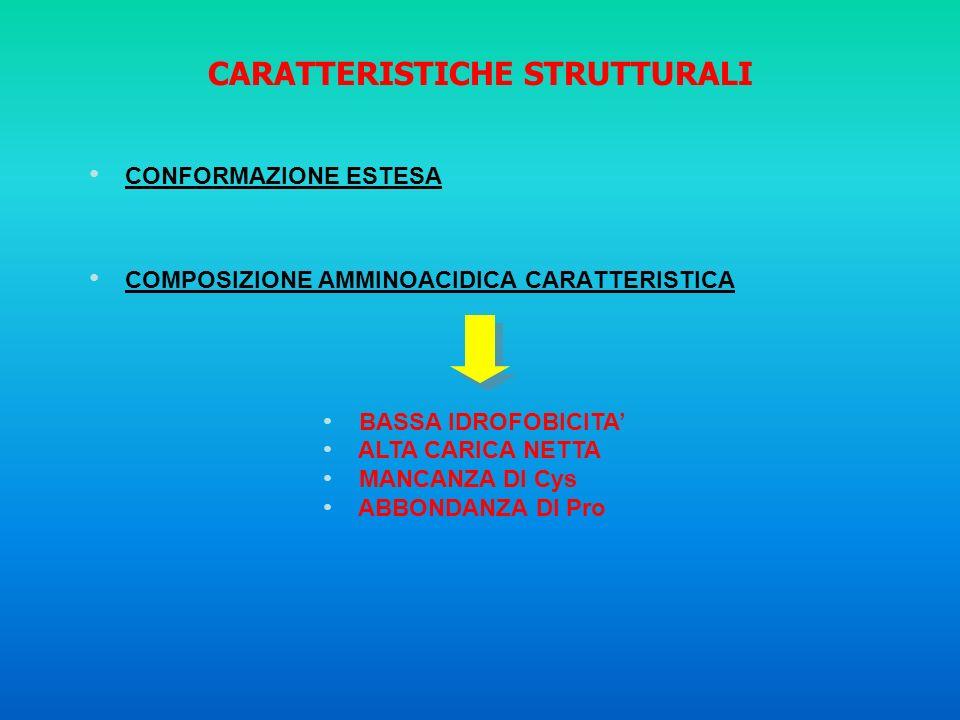 CARATTERISTICHE STRUTTURALI CONFORMAZIONE ESTESA COMPOSIZIONE AMMINOACIDICA CARATTERISTICA BASSA IDROFOBICITA ALTA CARICA NETTA MANCANZA DI Cys ABBOND