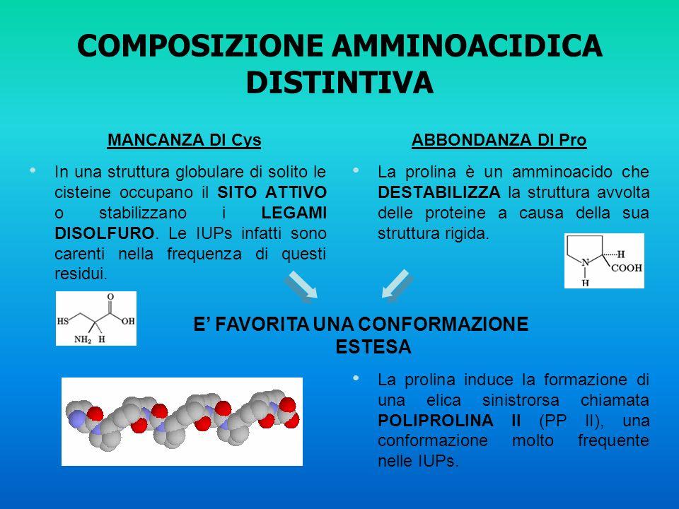 COMPOSIZIONE AMMINOACIDICA DISTINTIVA In una struttura globulare di solito le cisteine occupano il SITO ATTIVO o stabilizzano i LEGAMI DISOLFURO. Le I