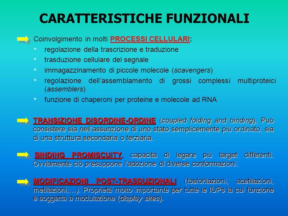 CARATTERISTICHE FUNZIONALI Coinvolgimento in molti PROCESSI CELLULARI: regolazione della trascrizione e traduzione trasduzione cellulare del segnale i