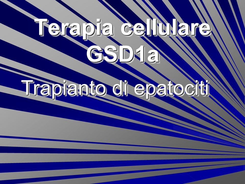 Terapia cellulare GSD1a Trapianto di epatociti