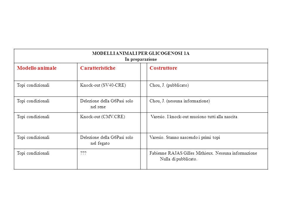 MODELLI ANIMALI PER GLICOGENOSI 1A In preparazione Modello animaleCaratteristicheCostruttore Topi condizionaliKnock-out (SV40-CRE)Chou, J. (pubblicato