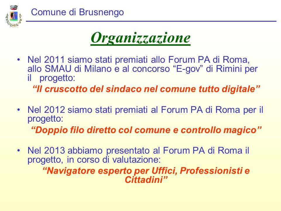 Comune di Brusnengo SITUAZIONE AL 31 DICEMBRE 2012