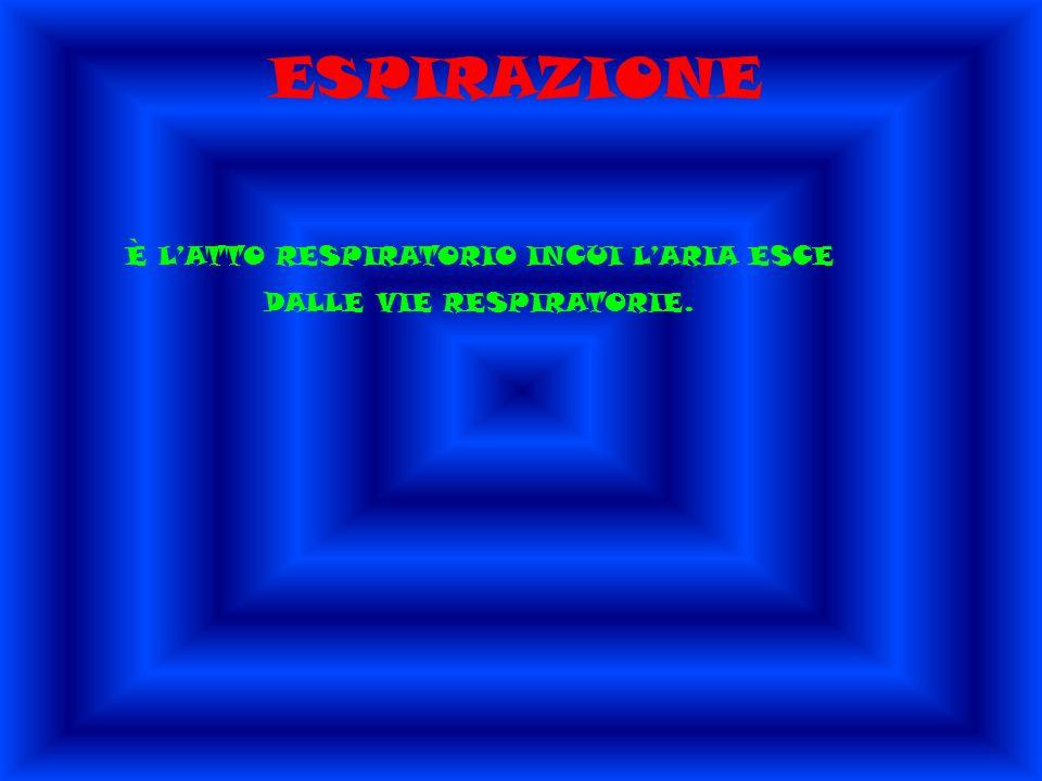 ESPIRAZIONE È LATTO RESPIRATORIO INCUI LARIA ESCE DALLE VIE RESPIRATORIE.
