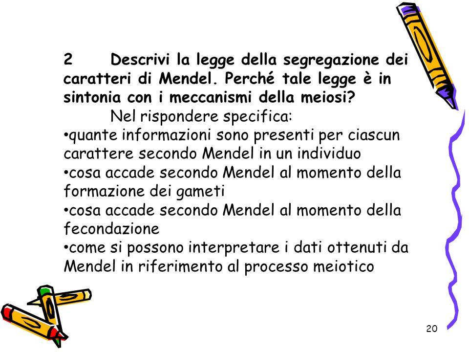 20 2Descrivi la legge della segregazione dei caratteri di Mendel. Perché tale legge è in sintonia con i meccanismi della meiosi? Nel rispondere specif