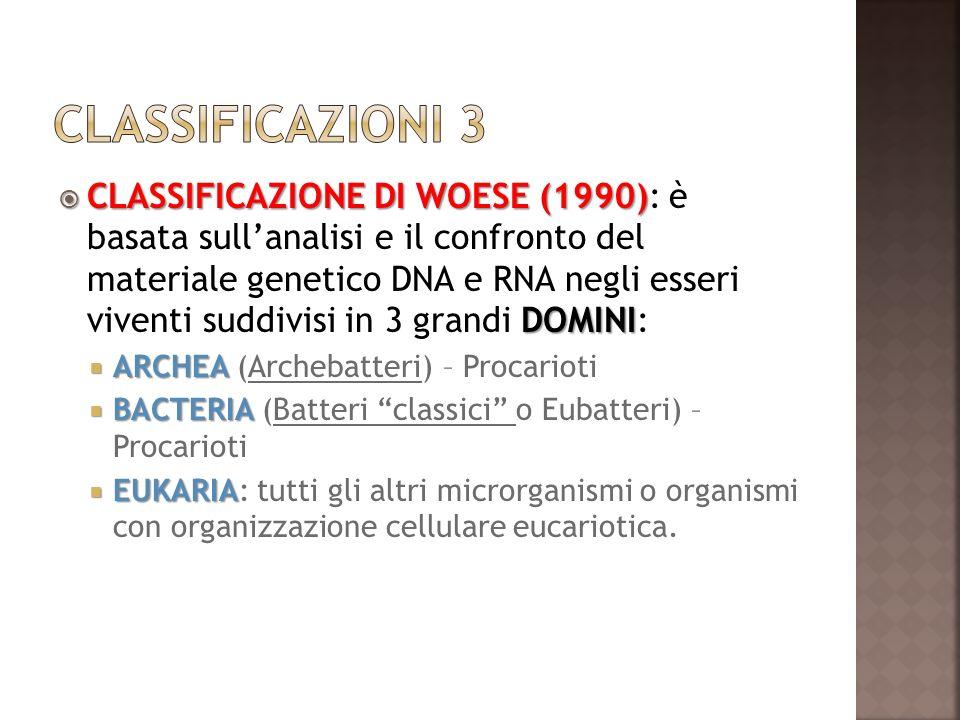 CLASSIFICAZIONE DI WOESE (1990) DOMINI CLASSIFICAZIONE DI WOESE (1990): è basata sullanalisi e il confronto del materiale genetico DNA e RNA negli ess