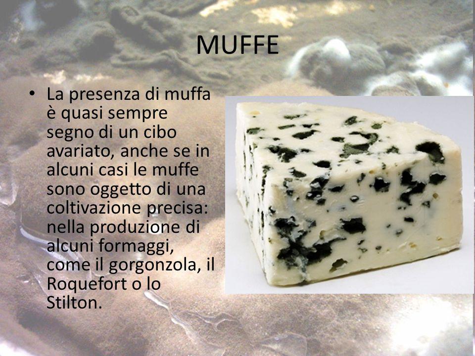 MUFFE La presenza di muffa è quasi sempre segno di un cibo avariato, anche se in alcuni casi le muffe sono oggetto di una coltivazione precisa: nella produzione di alcuni formaggi, come il gorgonzola, il Roquefort o lo Stilton.