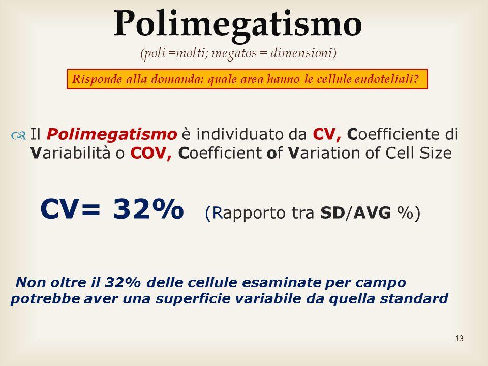 13 Il Polimegatismo è individuato da CV, Coefficiente di Variabilità o COV, Coefficient of Variation of Cell Size CV= 32% (Rapporto tra SD/AVG %) Non
