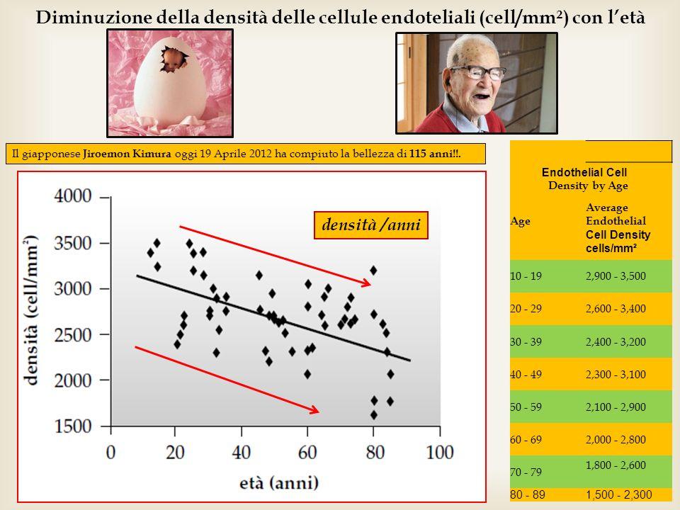 21 Diminuzione della densità delle cellule endoteliali (cell/mm²) con letà Il giapponese Jiroemon Kimura oggi 19 Aprile 2012 ha compiuto la bellezza d
