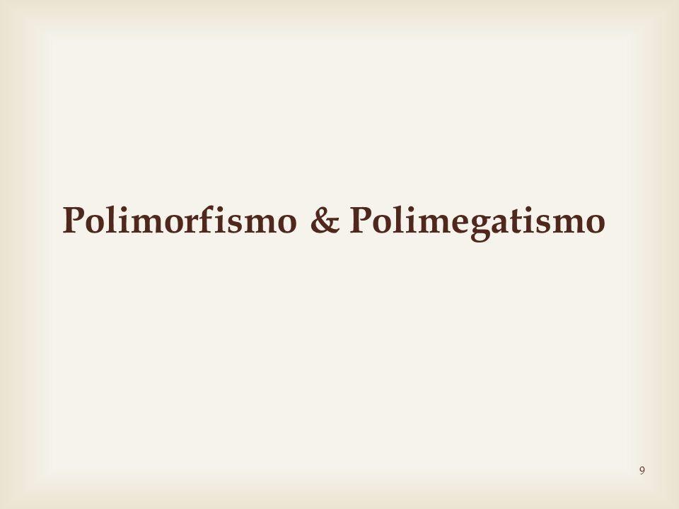 9 Polimorfismo & Polimegatismo