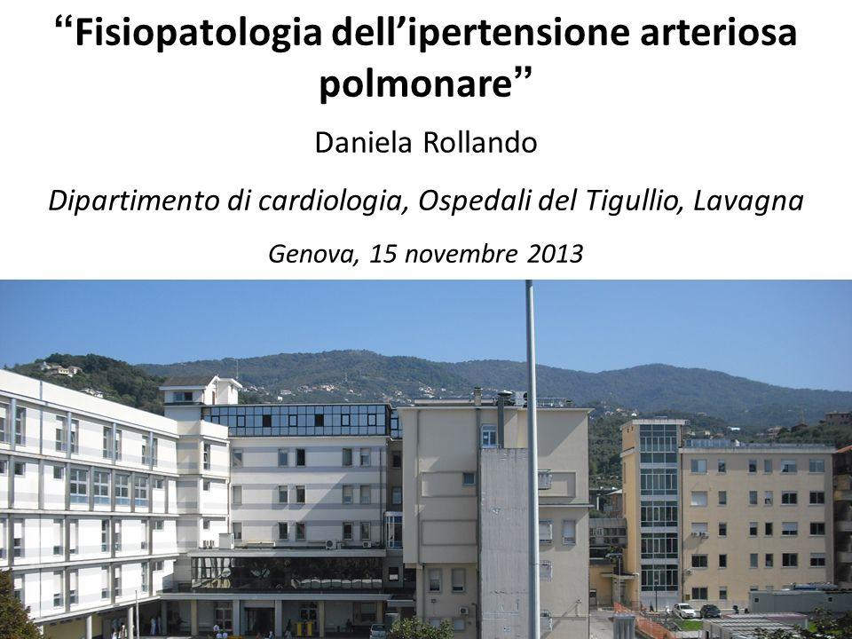 Fisiopatologia dellipertensione arteriosa polmonare Daniela Rollando Dipartimento di cardiologia, Ospedali del Tigullio, Lavagna Genova, 15 novembre 2013