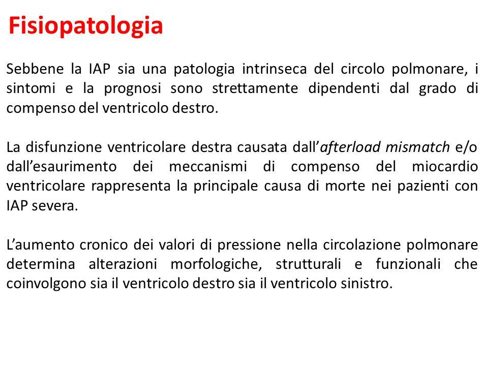 Fisiopatologia Sebbene la IAP sia una patologia intrinseca del circolo polmonare, i sintomi e la prognosi sono strettamente dipendenti dal grado di compenso del ventricolo destro.