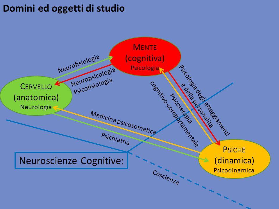 Neuroscienze Cognitive: C ERVELLO (anatomica) Neurologia M ENTE (cognitiva) Psicologia P SICHE (dinamica) Psicodinamica Neurofisiologia Neuropsicologi