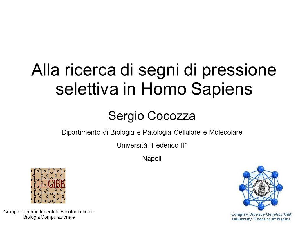 Alla ricerca di segni di pressione selettiva in Homo Sapiens Sergio Cocozza Dipartimento di Biologia e Patologia Cellulare e Molecolare Università Fed