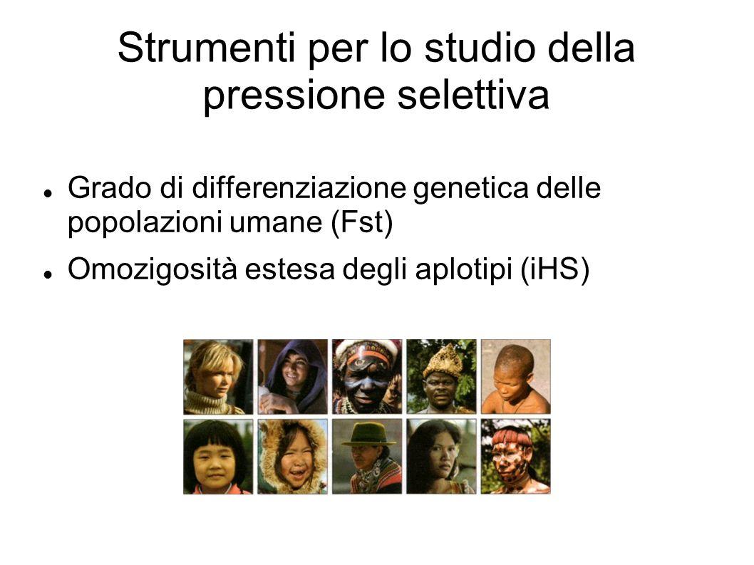 Strumenti per lo studio della pressione selettiva Grado di differenziazione genetica delle popolazioni umane (Fst) Omozigosità estesa degli aplotipi (