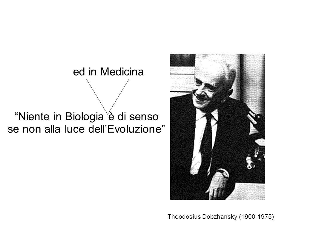 Niente in Biologia è di senso se non alla luce dellEvoluzione Theodosius Dobzhansky (1900-1975) ed in Medicina