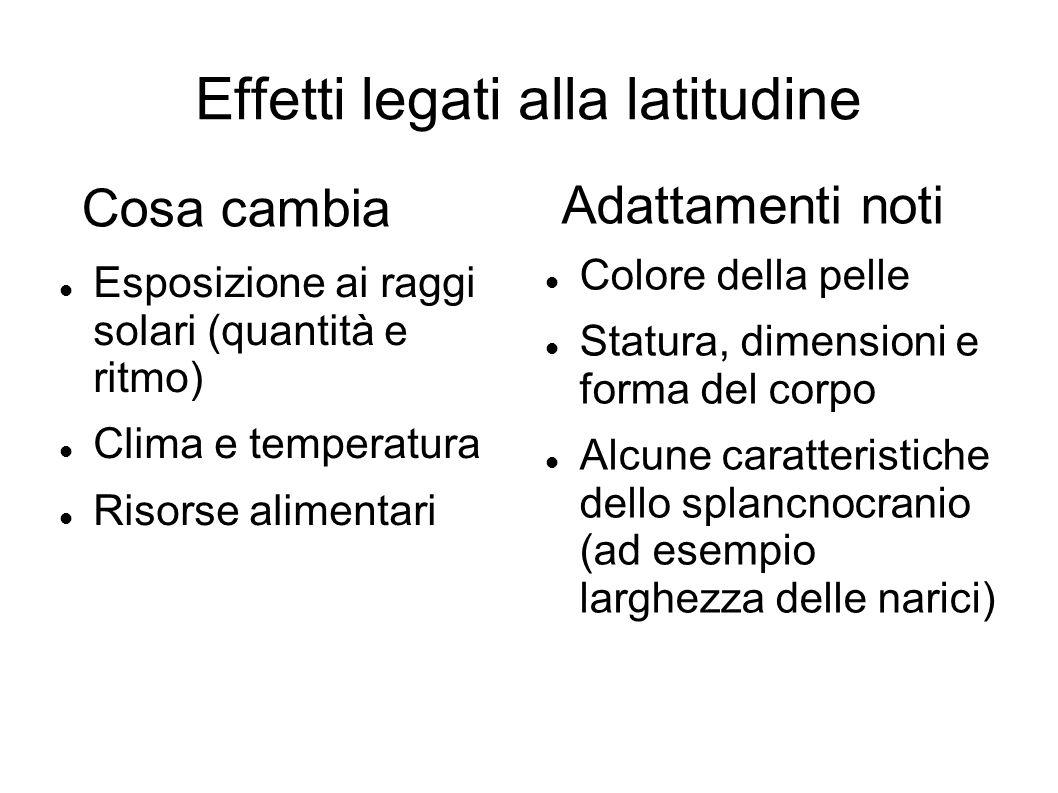 Effetti legati alla latitudine Esposizione ai raggi solari (quantità e ritmo) Clima e temperatura Risorse alimentari Colore della pelle Statura, dimen