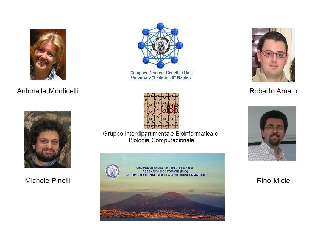 Antonella Monticelli Michele Pinelli Roberto Amato Rino Miele Gruppo Interdipartimentale Bioinformatica e Biologia Computazionale