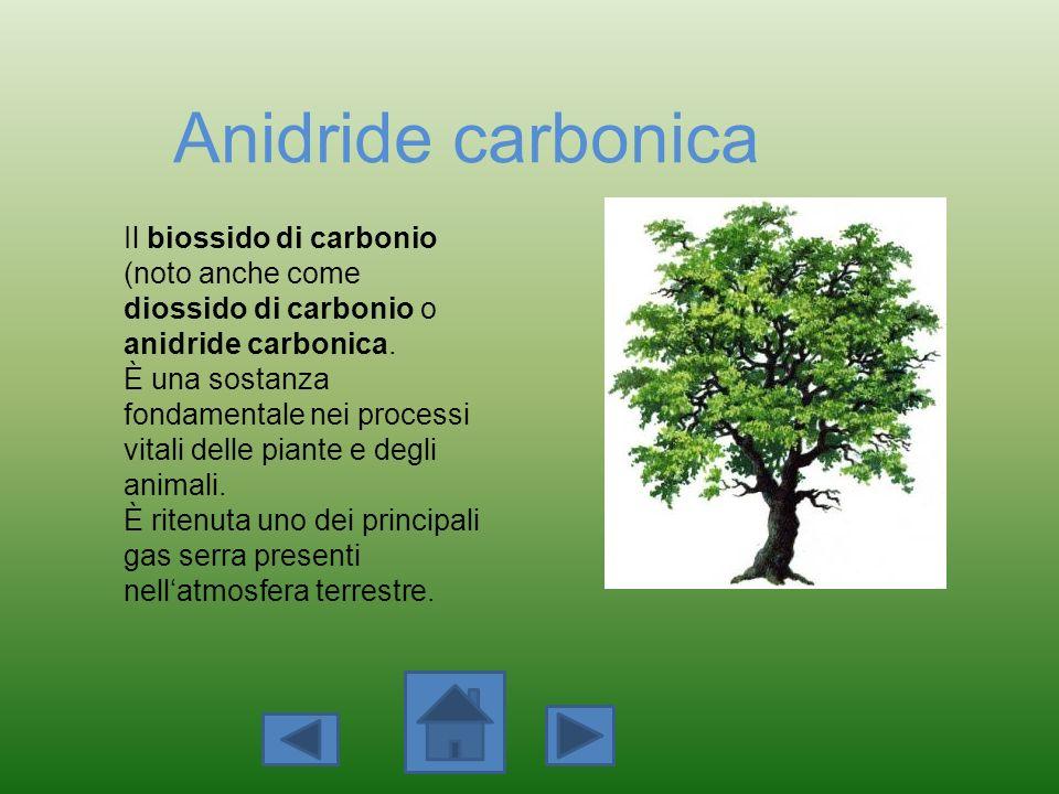 Anidride carbonica Il biossido di carbonio (noto anche come diossido di carbonio o anidride carbonica. È una sostanza fondamentale nei processi vitali
