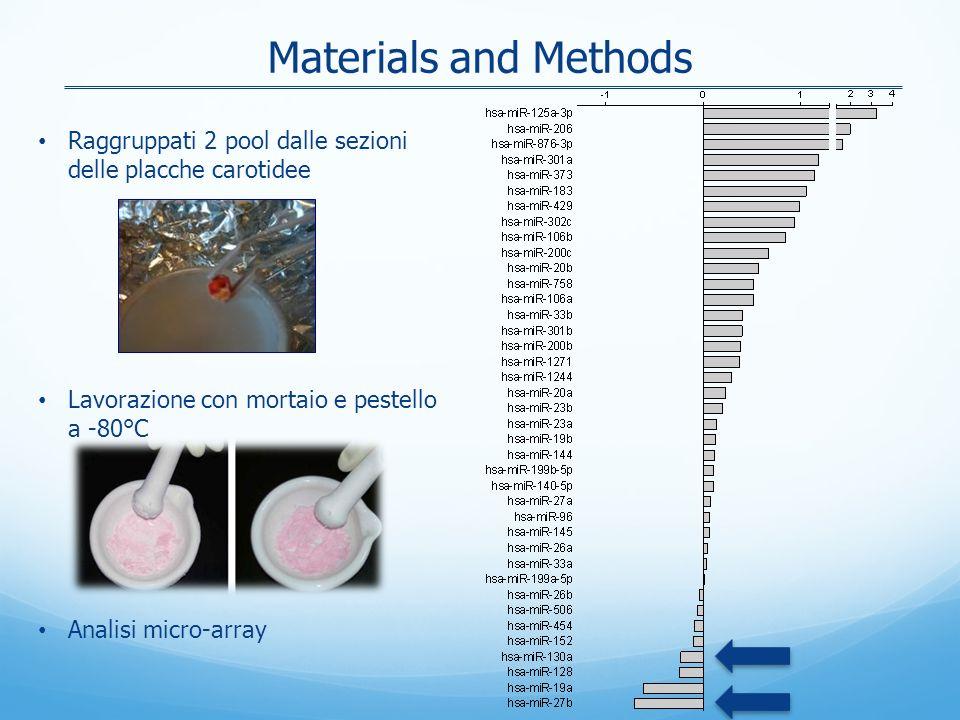 Materials and Methods Raggruppati 2 pool dalle sezioni delle placche carotidee Lavorazione con mortaio e pestello a -80°C Analisi micro-array