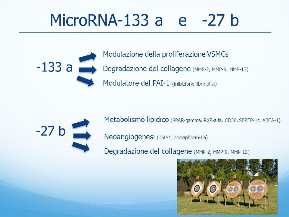 MicroRNA-133 a e -27 b -133 a -27 b Metabolismo lipidico (PPAR-gamma, RXR-alfa, CD36, SBREP-1c, ABCA-1) Neoangiogenesi (TSP-1, semaphorin-6a) Degradazione del collagene (MMP-2, MMP-9, MMP-13) Modulazione della proliferazione VSMCs Degradazione del collagene (MMP-2, MMP-9, MMP-13) Modulatore del PAI-1 (inibizione fibrinolisi)