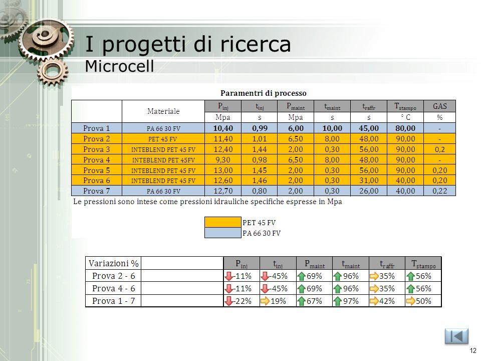 I progetti di ricerca Microcell 12