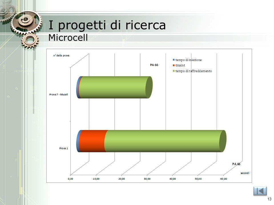I progetti di ricerca Microcell 13