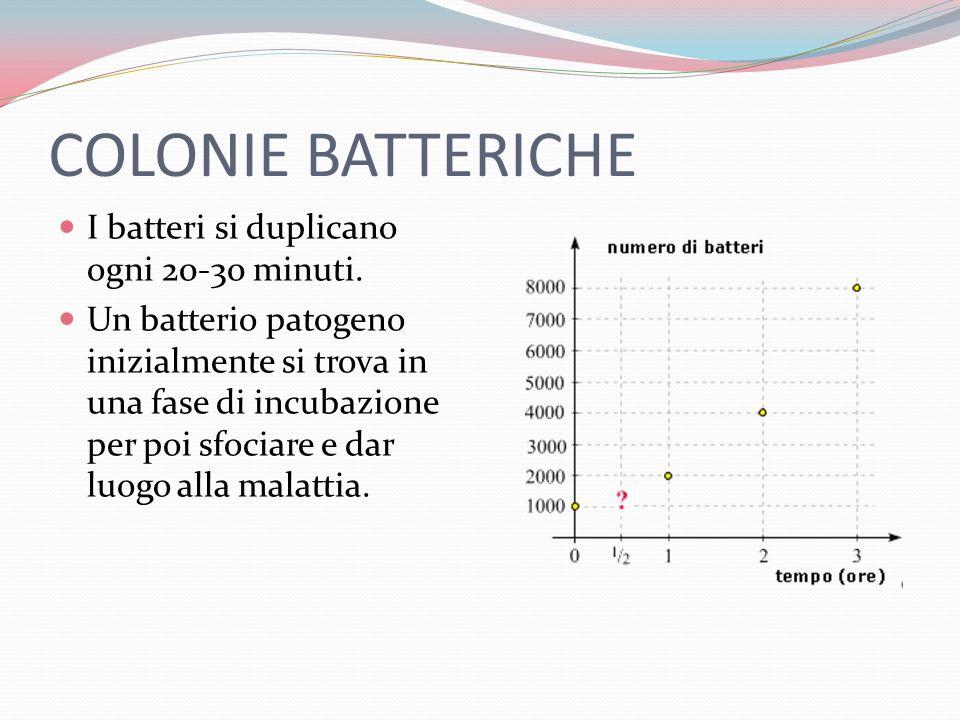 COLONIE BATTERICHE I batteri si duplicano ogni 20-30 minuti.