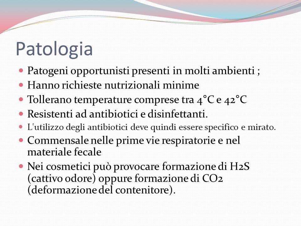 Patologia Patogeni opportunisti presenti in molti ambienti ; Hanno richieste nutrizionali minime Tollerano temperature comprese tra 4°C e 42°C Resistenti ad antibiotici e disinfettanti.