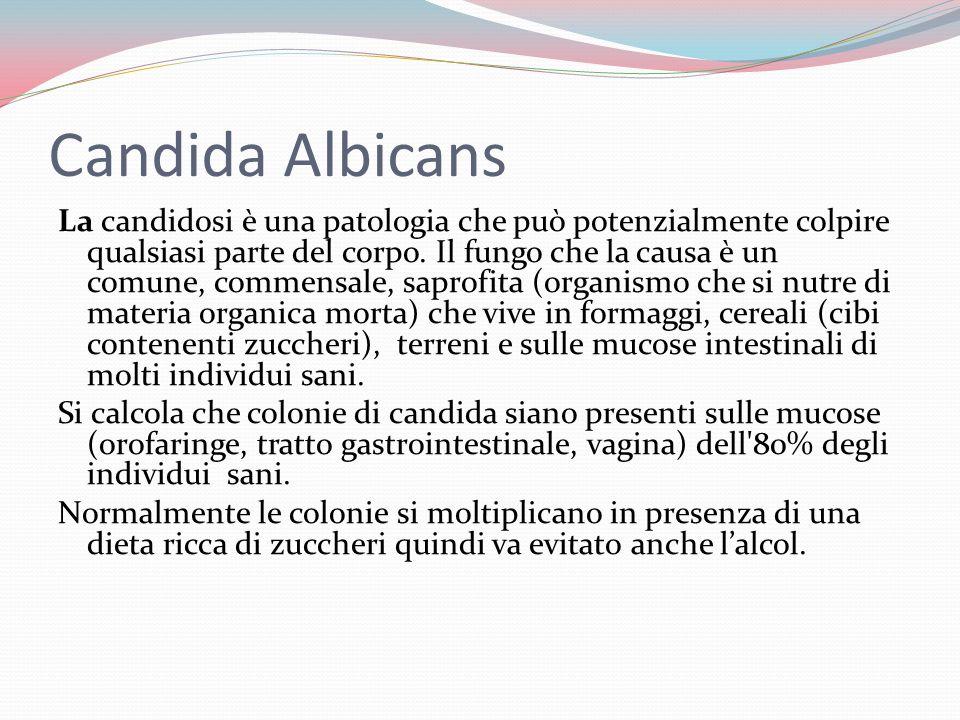 Candida Albicans La candidosi è una patologia che può potenzialmente colpire qualsiasi parte del corpo.